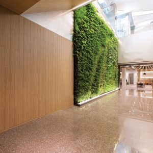 LG Hausys Architectural Films - Wood